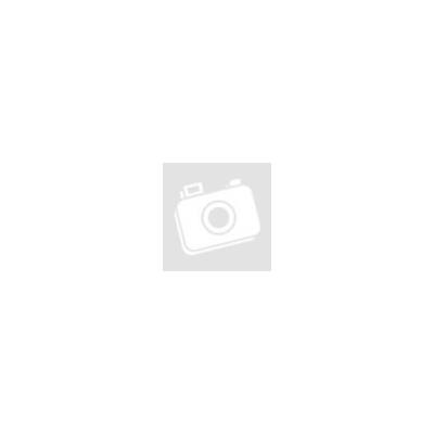 David Michie: A lhászai mágus